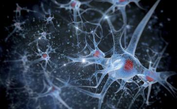 «Искусственный синапс» указывает путь к портативным устройствам ИИ